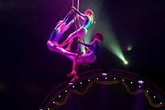 lotti_circus_011