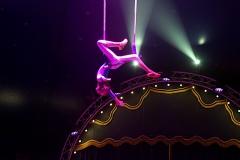lotti_circus_019
