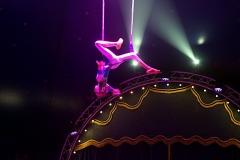 lotti_circus_020