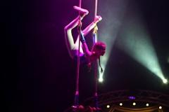 lotti_circus_2
