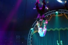 lotti_circus_7